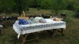 picnic on the prairie