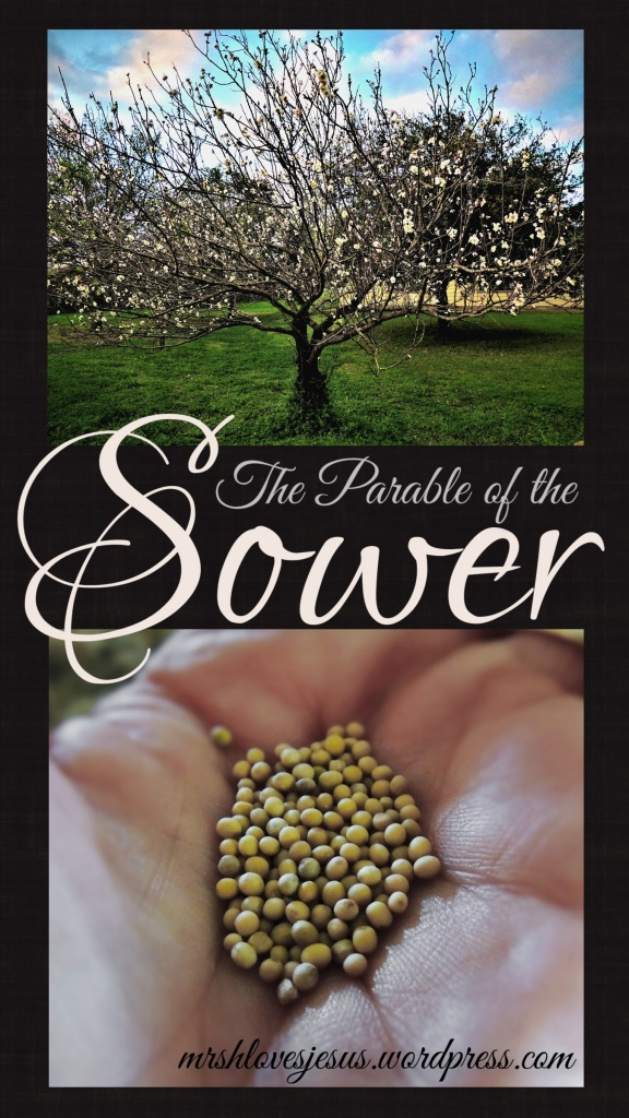 Parable of the Sower1