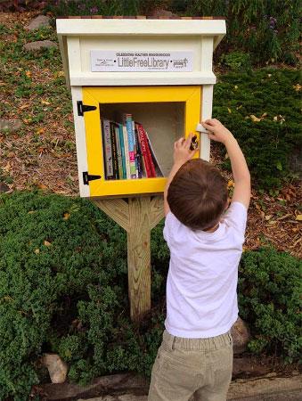 small-boy-readingbook